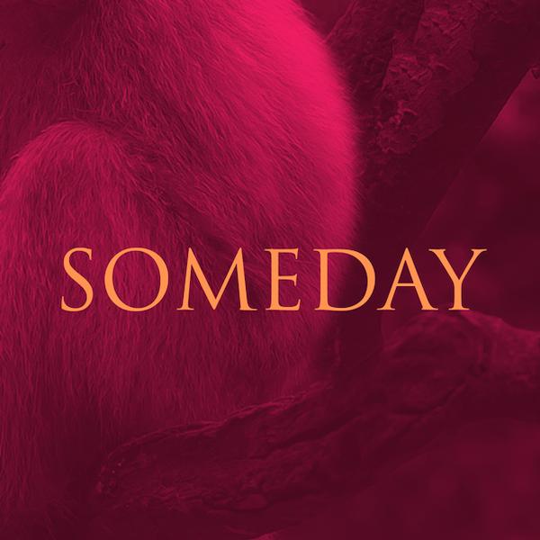 Someday_SingleArtwork_600x600